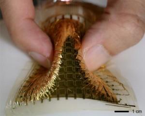 La membrane synthétique est originellement transparente mais une fois assemblée avec les transistors, commutateurs organiques et circuits, l?ensemble ressemble à une feuille de métal doré.